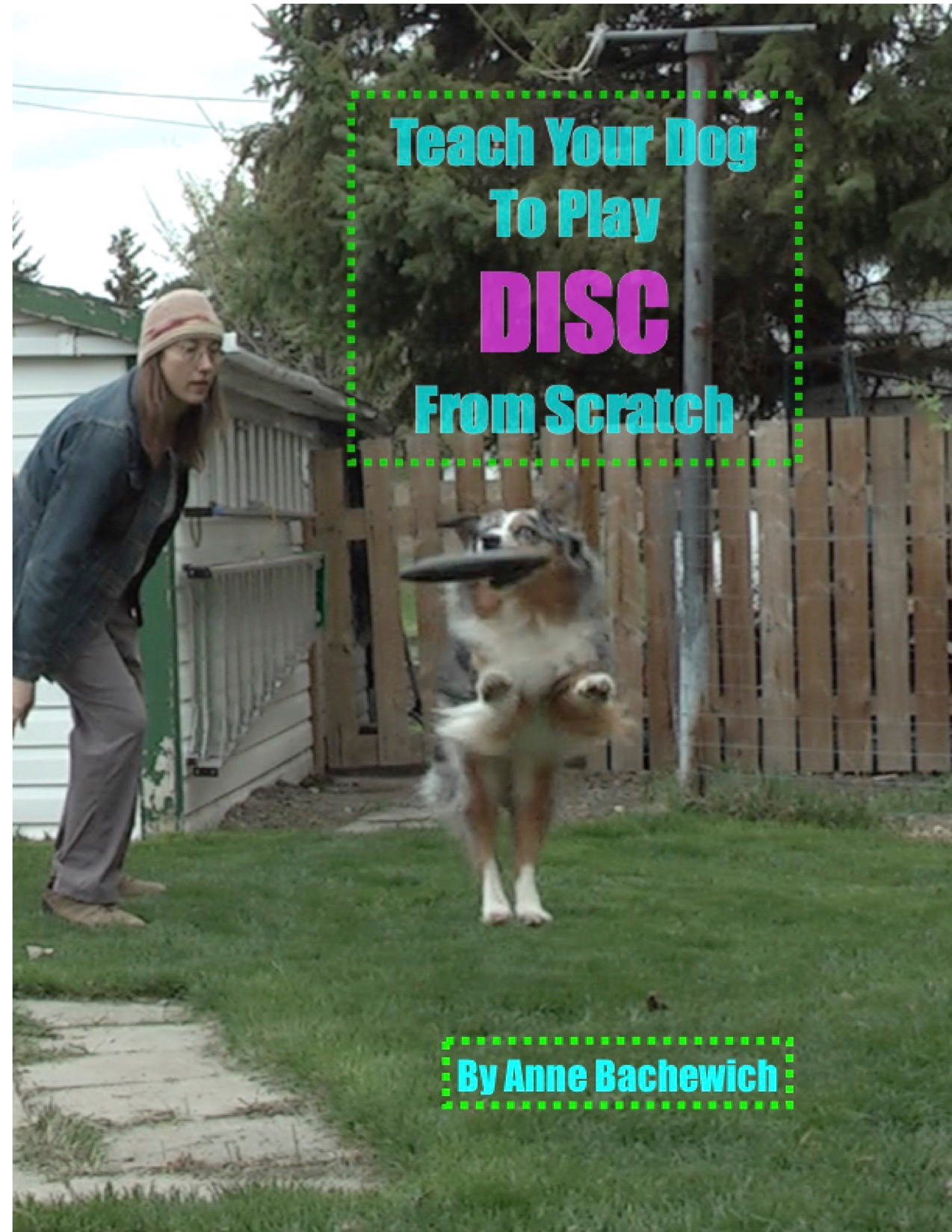 discfrom scratch cover2